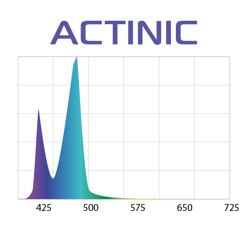 wykres actinic
