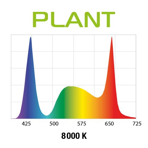 wykres plant