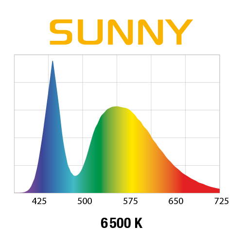 wykres sunny